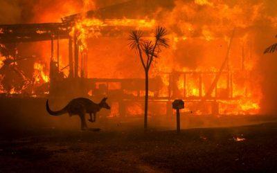 AUS Bushfire Worldwide Meditation